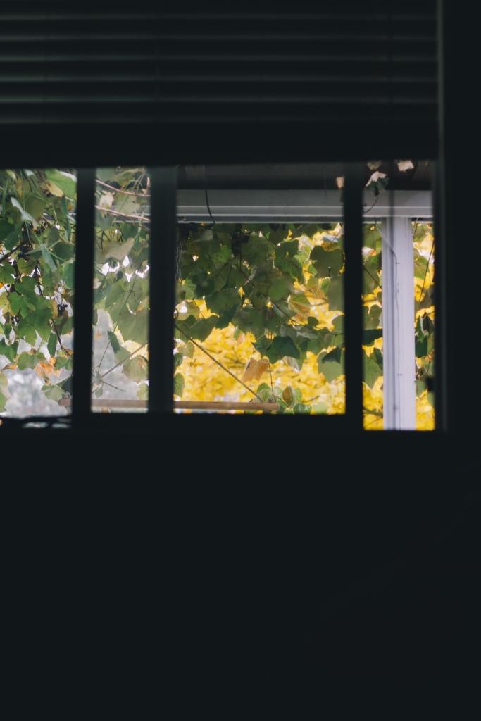 fall2013-22