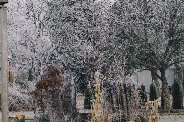 winter2013-27